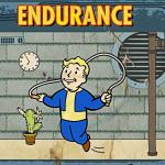 Endurance Fallout Perk Liste