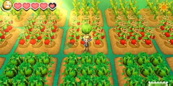 cheats, tipps und tricks story_of_seasons
